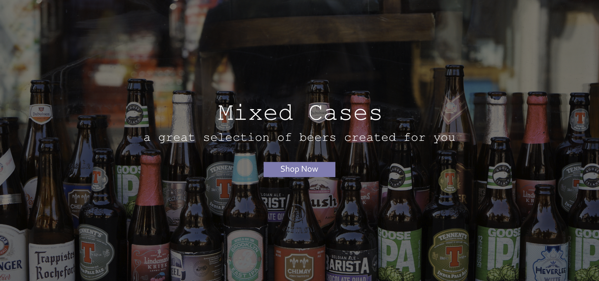 Mixed Beer Cases